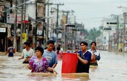 Cuộc sống người dân Thái Lan đảo lộn vì lũ