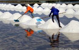 Khám phá nghề làm muối tại Thái Lan