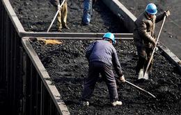 Trung Quốc cấm nhập khẩu than đá từ Triều Tiên