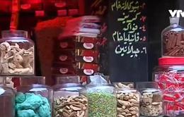 Xu hướng chữa bệnh bằng thảo dược tại Ai Cập