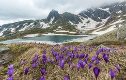 Không chỉ có hoa hồng, Bulgaria còn mê hoặc du khách vì điều này!