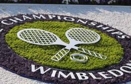 """Wimbledon 2017: Loại từ vòng """"gửi xe"""" cũng có tiền tỷ mang về"""
