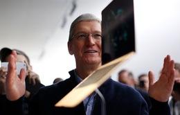 """Sau iPhone và iPad, Apple tiếp tục """"sống khỏe, sống tốt"""" tại thị trường latop"""