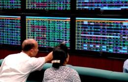 Thị trường chứng khoán trong nước ngập sắc xanh