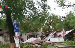 Thiệt hại do thiên tai tại Việt Nam sẽ được giảm thiểu