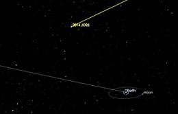 Thiên thạch lớn bằng 6 sân bóng sắp bay ngang qua Trái Đất
