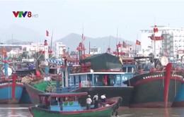 Lắp đặt thiết bị nhận dạng tàu cá, giúp ngư dân yên tâm trên biển