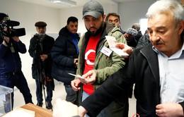 Công dân Thổ Nhĩ Kỳ ở nước ngoài đi bỏ phiếu về sửa đổi Hiến pháp