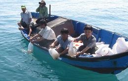 TT-Huế: Thả tôm, cua giống tái tạo nguồn lợi thủy sản