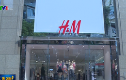 Sức hút thời trang nhanh tại Việt Nam