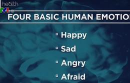 Tại sao con người lại có cảm xúc thù ghét?