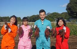 Sắc màu Nhật Bản mùa 2 chính thức lên sóng VTV3