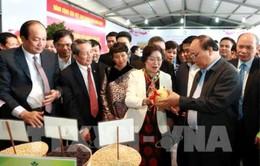 Thủ tướng khởi động sản xuất nông nghiệp công nghệ cao