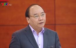 Thủ tướng: Phải tạo đột phá để phát triển nguồn dược liệu Việt Nam