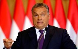 Thủ tướng Hungary bắt đầu chuyến thăm chính thức Việt Nam