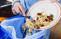 Người Mỹ lãng phí 218 tỷ USD thực phẩm mỗi năm