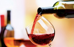 Tụt huyết áp, uống 1 ly rượu vang đỏ rất tốt