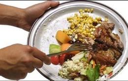 Chống lãng phí thực phẩm với ứng dụng smartphone