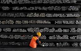 Trung Quốc yêu cầu EU thay đổi cách tính thuế chống bán phá giá