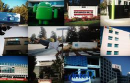 Công ty công nghệ - Điểm đến du lịch mới