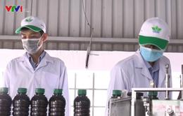 50% thuốc bảo vệ thực vật ở Việt Nam không rõ nguồn gốc