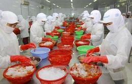 Xuất khẩu thủy sản 5 tháng đầu năm ước đạt 2,8 tỷ USD