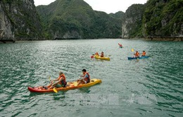 Hạ Long đình chỉ các đơn vị kinh doanh dịch vụ chèo thuyền kayak sai quy định