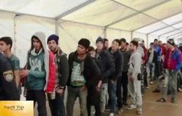Người tị nạn Việt Nam tại Đức muốn hồi hương sẽ tiếp tục được hỗ trợ