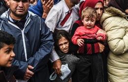 Czech phản đối hạn ngạch tị nạn châu Âu
