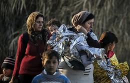 Mỹ sẽ chấp nhận số người tị nạn thấp kỷ lục trong năm 2018