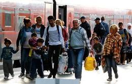 Số người di cư tới Đức giảm mạnh