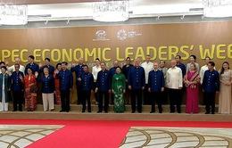 Tiệc chiêu đãi lãnh đạo các nền kinh tế thành viên APEC và các phu nhân, phu quân