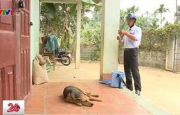 Khó khăn trong công tác tiêm phòng dại chó