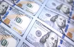 Hàn Quốc phát hiện tờ 100 USD bị làm giả siêu tinh vi