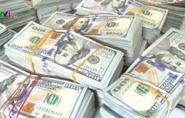 Thu giữ gần 1 triệu USD vận chuyển trái phép qua biên giới