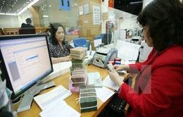 NHNN bơm ròng kỷ lục 66.000 tỷ đáp ứng thanh khoản