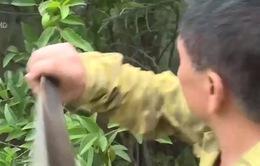 Cựu chiến binh 40 năm phát thuốc chữa bệnh miễn phí
