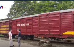 Container lạnh - Cơ hội giảm giá cước, tăng sức cạnh tranh cho hàng hóa