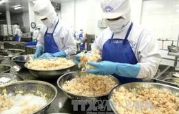 Ngành tôm xuất khẩu có nguy cơ mất thị trường 800 triệu USD