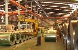 Áp thuế tự vệ với tôn mạ nhập khẩu, DN nội mở rộng sản xuất