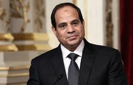 Tổng thống Ai Cập thăm cấp Nhà nước tới Việt Nam