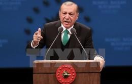 Thổ Nhĩ Kỳ sẽ trưng cầu dân ý việc theo đuổi tiến trình gia nhập EU