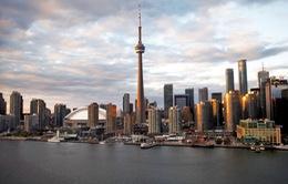 Google và kế hoạch thay đổi cách mạng các thành phố trên thế giới