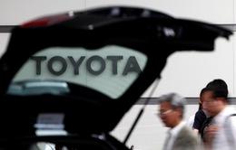 Nhật Bản bảo vệ Toyota trước cảnh báo đánh thuế của ông Donald Trump