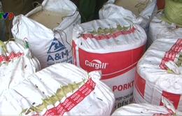 Kiên Giang: Phát hiện cơ sở kinh doanh da trâu, bò, mỡ lợn bẩn