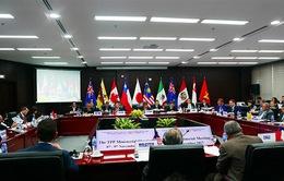 APEC 2017: TPP đổi tên thành Hiệp định Đối tác Toàn diện và Tiến bộ xuyên Thái Bình Dương