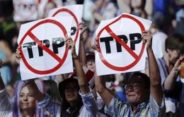 Hiệp định TPP vẫn đang được theo đuổi dù vắng Mỹ