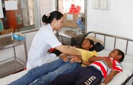 Nguy cơ bùng phát dịch sốt xuất huyết tại Trà Vinh