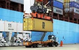 Mỹ: Thâm hụt thương mại tiếp tục tăng