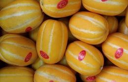 Loạn tem dán trái cây nhập khẩu